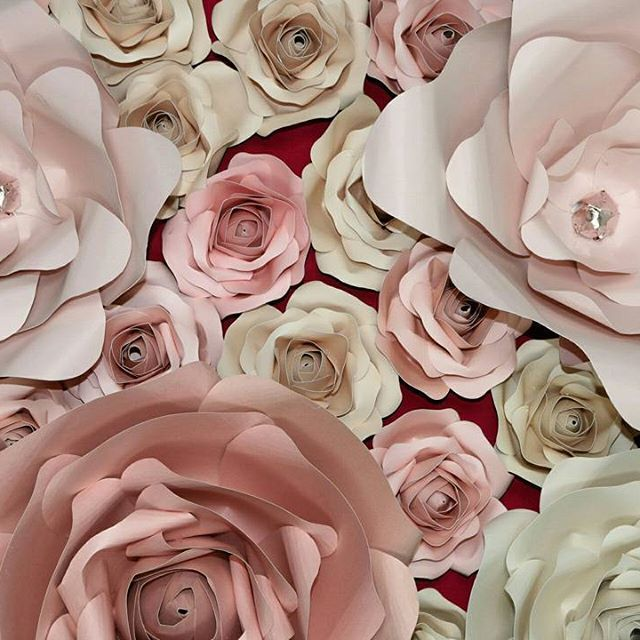 Shades of pink roses! DM or email for any order!  #picapture #pastel #rose #pink #baby #girl #mississauga #ontario #canada #eventplanner #weddingplanner #Micheals #paper #DIY #decor #homedecor #home #walldecor #mississauagaevents #planning #paperflower #paperflowerwall #paperflowerbackdrop #nurserydecor #papercrafts #craft #instalove #birthdayparty #caketable #1stbirthday