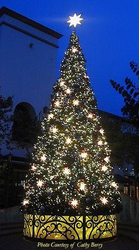 Christmas and Holiday Decorations: 34' Oregon Cascade Fir Tree Custom Designed