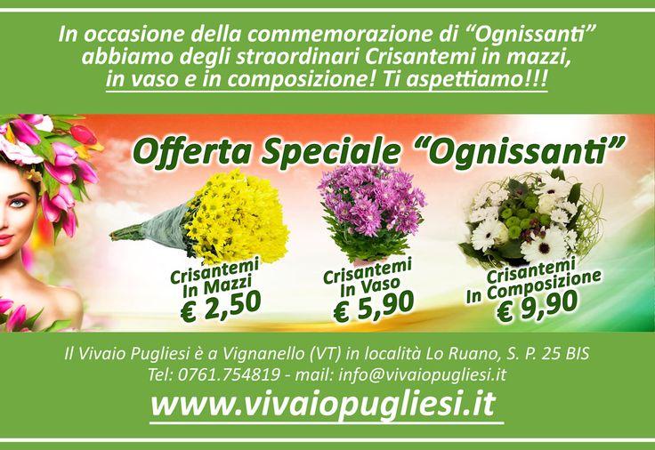 Approfitta di quest'offerta dedicata alla commemorazione di Ognissanti: crisantemi recisi in mazzi a partire da € 2,50 - in vaso a € 5,90 e in composizione a soli € 9,90! Ricorda che per l'occasione resteremo aperti di domenica per tutto il giorno...TI ASPETTIAMO!!! Il Vivaio Pugliesi è a Vignanello (VT) In Località Lo Ruano, S. P. 25 BIS Tel: 0761.754819 - mail: info@vivaiopugliesi.it www.vivaiopugliesi.it