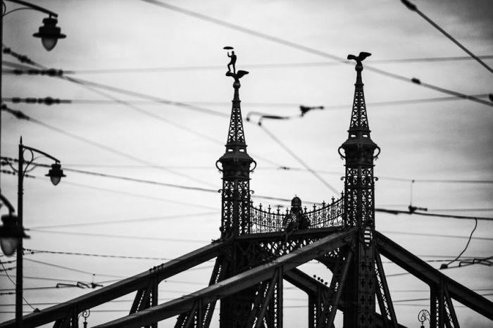 Мост Свободы, Будапешт. Автор фото: Питер Калло (Peter Callo).