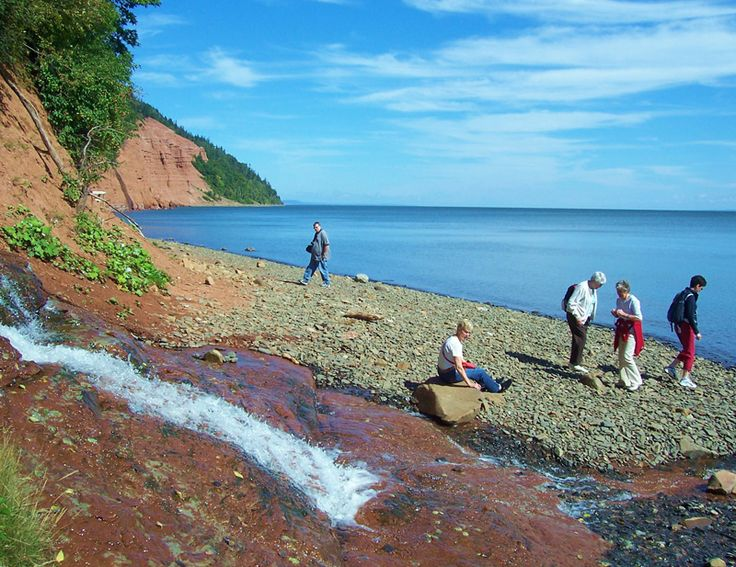 Beach combing on the Bay of Fundy,  Nova Scotia.