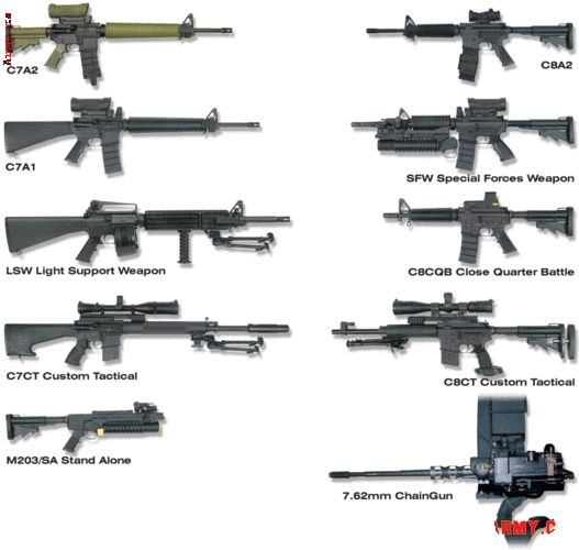 Canadian Armed Forces Light Arms #Canadian #Military