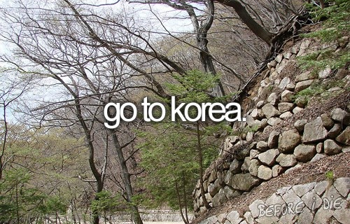 Not fond of Asia but I been stationed here for a year and visited Seoul while in the military.
