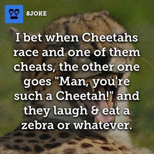 When cheetahs race.