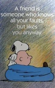 A friend is someone who knows all your faults, but likes you anyway.