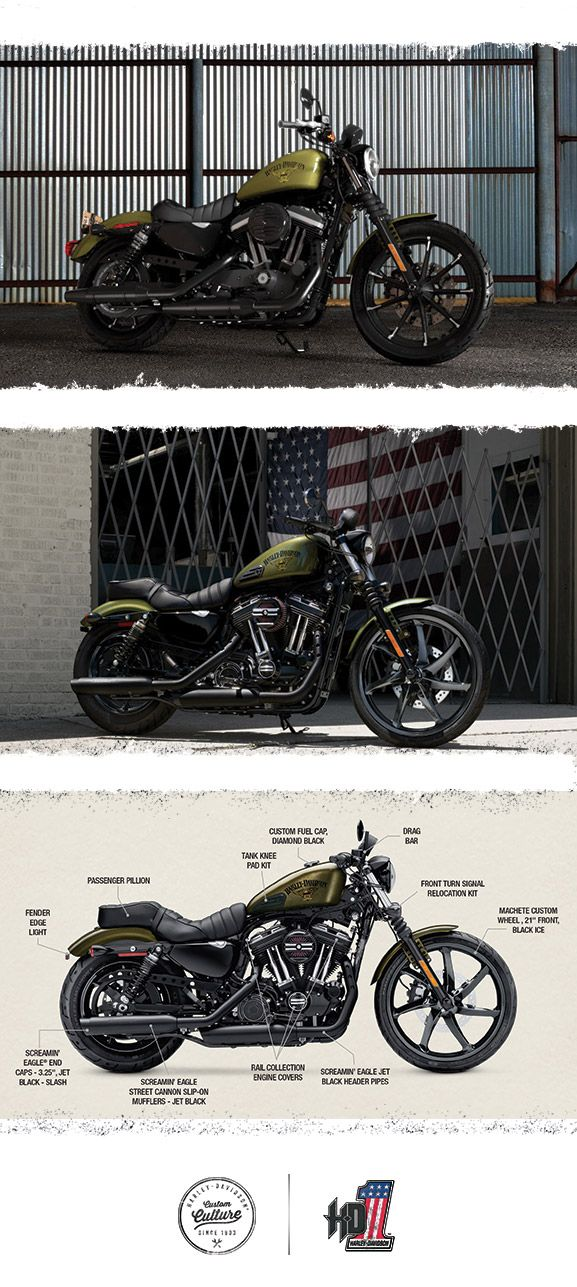 It's all about you.   2016 Harley-Davidson Iron 883