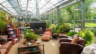 Оранжерейный зимний сад фото