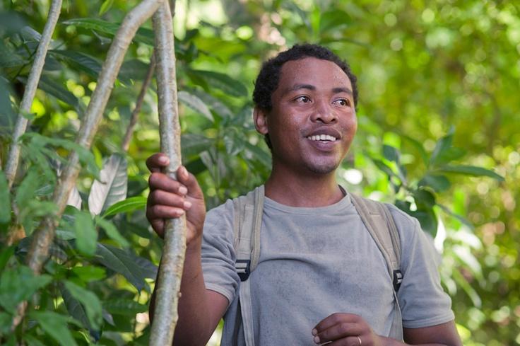 Suivez le guide, Trekking et Mystère de la forêt. G.Planchenault