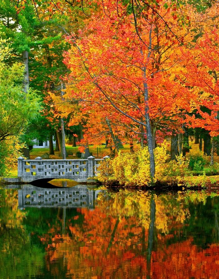 Fall in New Hampshire    #photography #nature #reflections