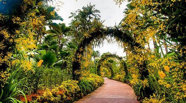 20 Photographs Of The World's Most Famous Gardens-Singapore Botanic Gardens (Singapore)