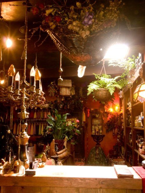 Plants everywhere, shelves of herbs and spices to the right, and a whole wall of home-made candles hanging in the back!  Want.
