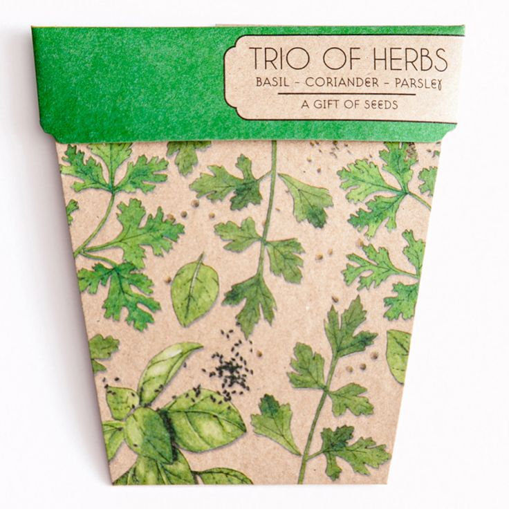 SOW 'N SOW | Trio of Herbs. //  parsley. coriander. basil. kitchen gardener. gift. card. herbs. made in melbourne. green. eco-friendly.