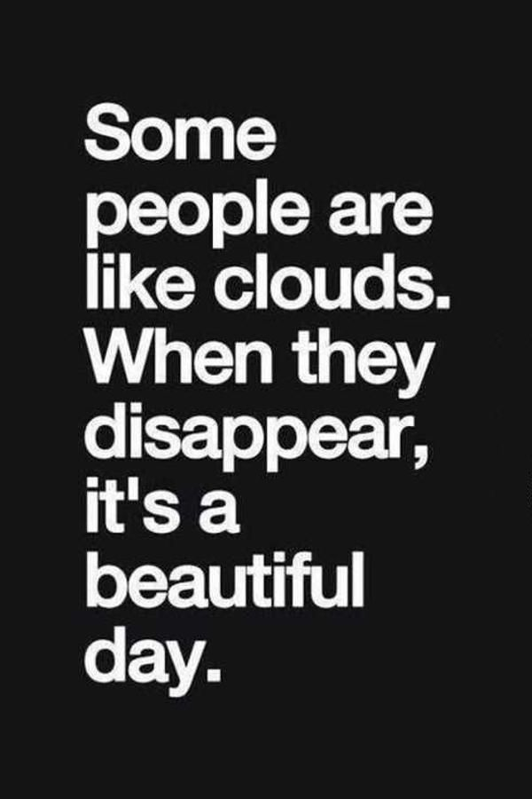 Cool Funny Quotes You Will Absolutely Love Beautiful Day When They Disappear