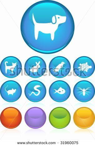 Pet Icon Set Blue by John T Takai, via Shutterstock