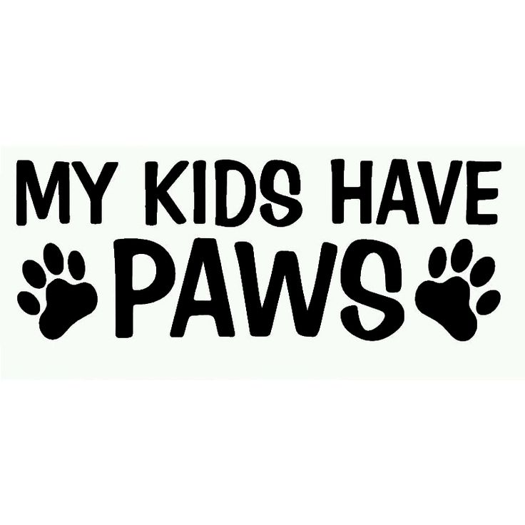 18*7cm Cute My Kids Have Paws Funny Truck Bumper Motorcycle Vinyl Decal Sticker Family Dog Puppy Pet