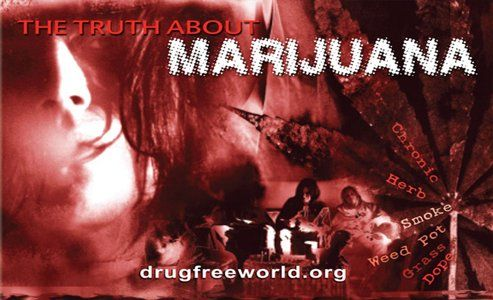 Free The Truth About Drugs Booklet