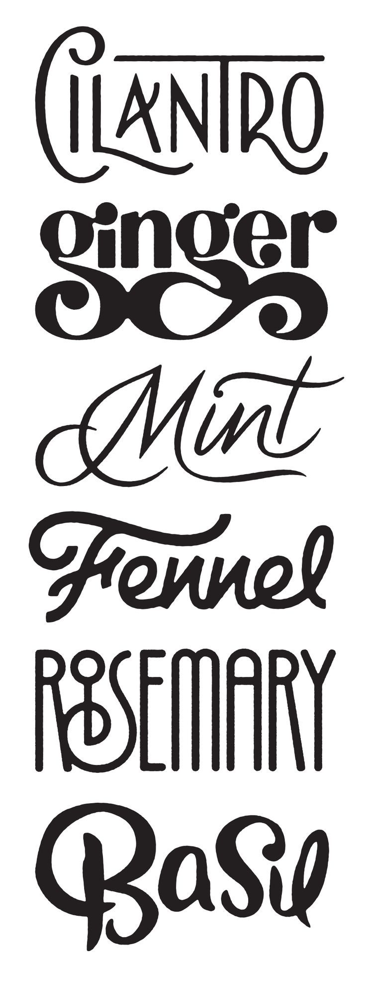 Wow, we are loving all these different fonts, each for a different herb. #Typography #font