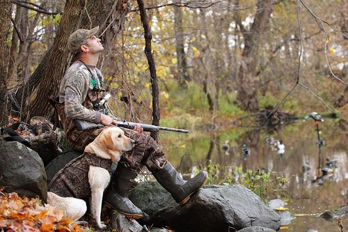 hunting photography - Google Search