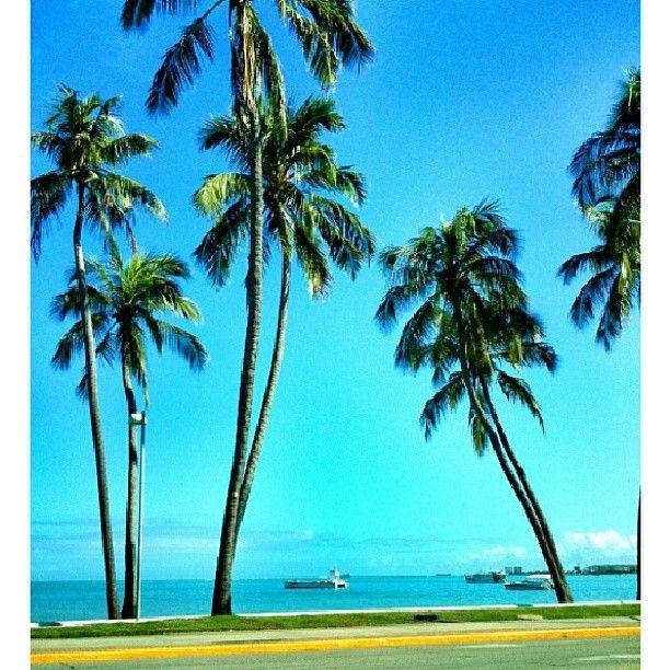 Praia dos Sete Coqueiros - Maceió/AL
