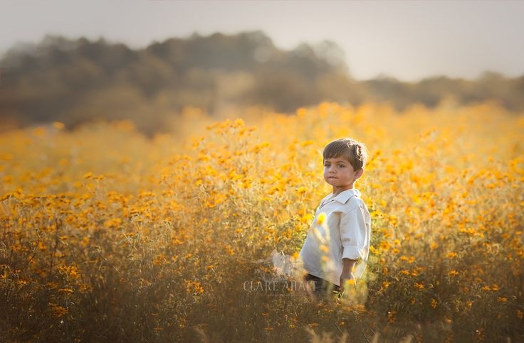 Portrait of a little boy in a field of yellow flowers, taken in Northern Virginia by Clare Ahalt Photography, a fine art photographer located in mid-maryland