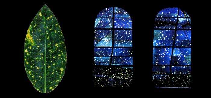 Atelier JD Fleury /vitrail contemporain/ creation de vitraux d'artistes