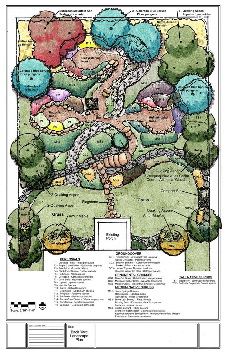 Interesting landscape plan