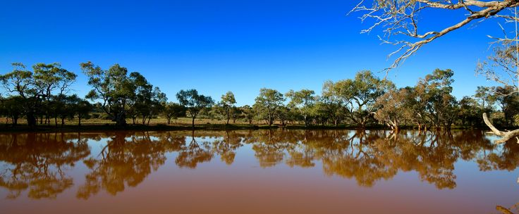 Eringa Waterhole just south of the NT border