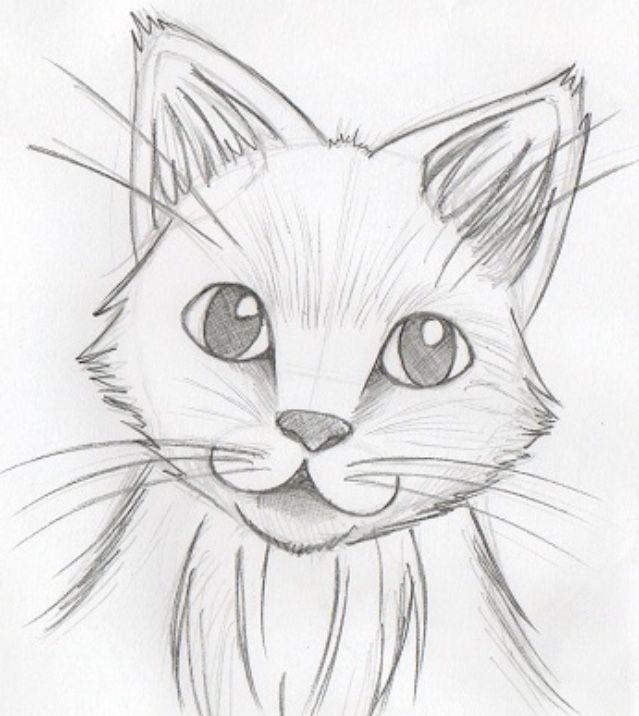 drawing pencil drawings easy sketches beginners sketch animal beginner simple kitten cat draw realistic skizzen nur dibujos gato facil katze