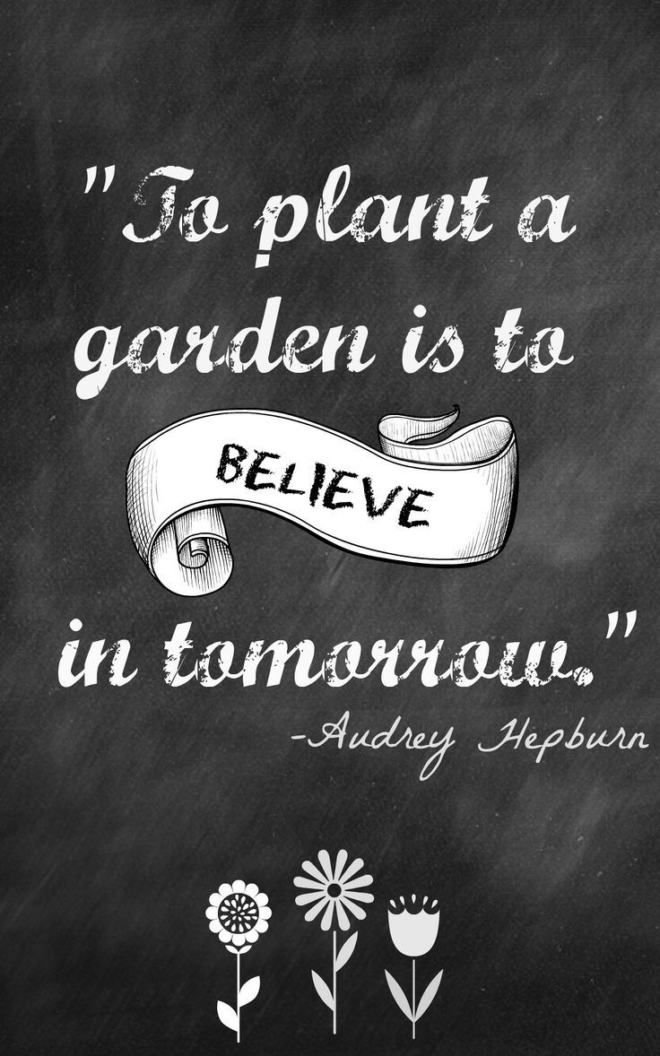To Plant A Garden Is To Believe In Tomorrow Audrey