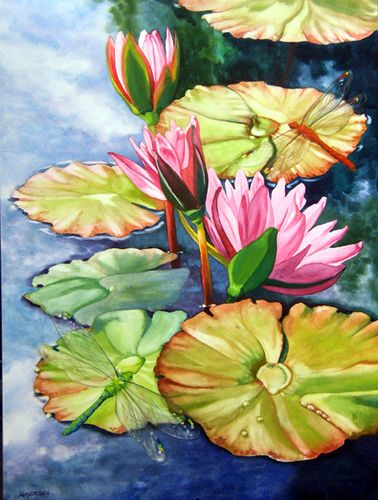 waterlilies & dragonflies, watercolor by nancy wernersbach 2007