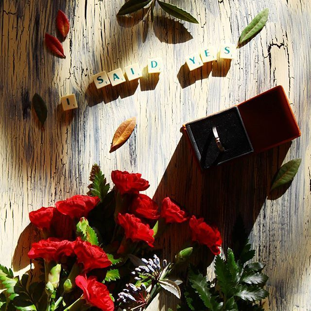 I said YES! #bestbirthdayever #engagement #engagementring #barberry #rawdiamond #roughdiamond #titanium #titaniumengagementring #ring #love #lovefall #loveautumn #autumnengagement #inneobraczki #cloves #flower #redbuquet #buquet #leaves #zaręczyny #surowydiament #nieoszlifowanydiament #tytan #couple #moon #isaidyes #Kielce #polska #engaged #proposal