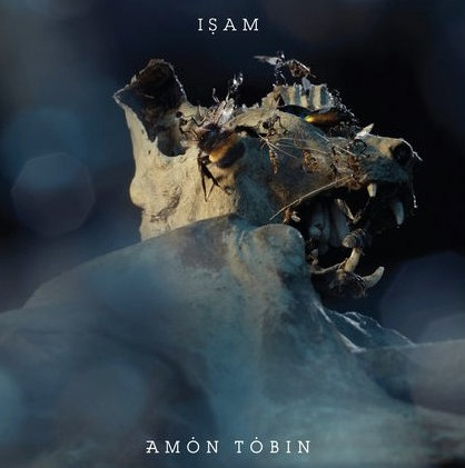 21 best A M O N - T O B I N images on Pinterest | Amon, Music and ...