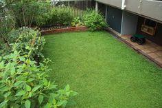 クラピア<1>芝生に代わる新しいグランドカバーの魅力!   クラピア大好き