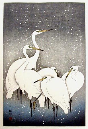 Five Herons in Snow by Ohara Koson, 1927