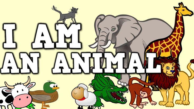 animal movement for kids - photo #26