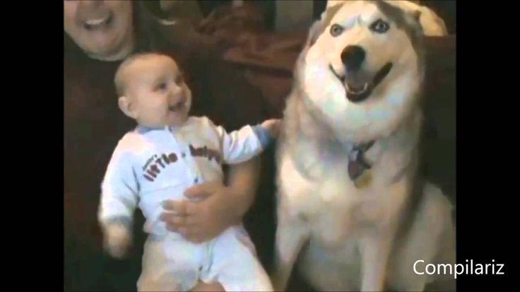 Дети И Собаки! Лучшая Веселая Подборка Прикол