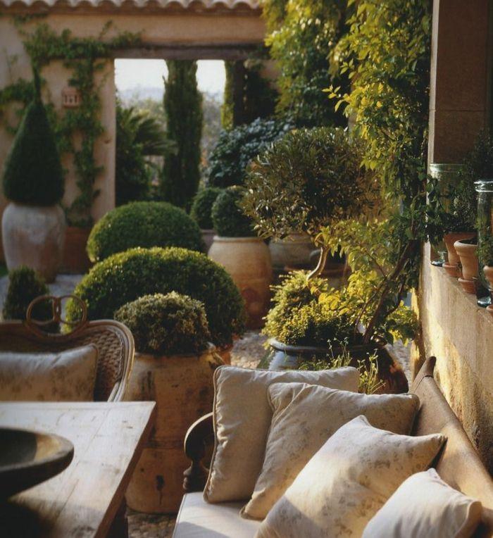 plantes grimpantes pour le jardin, salon de jardin meubles de couleur taupe