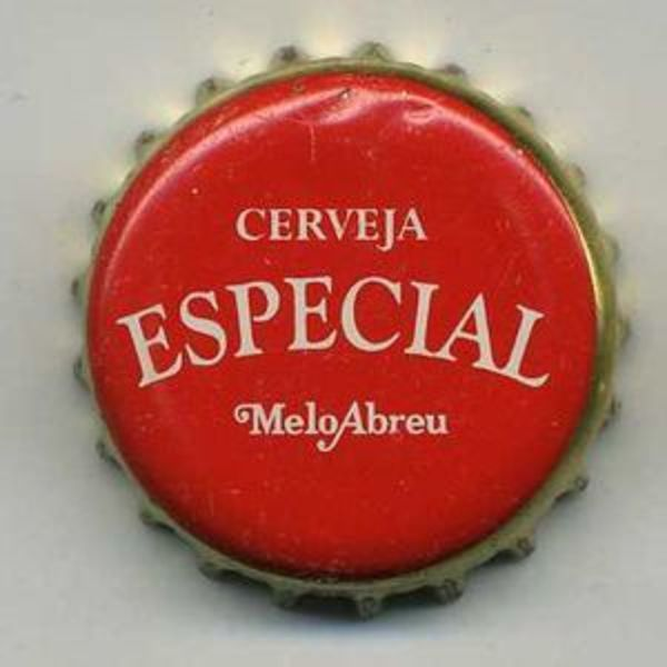 In the Azores, the weather and the esplanades with amazing sights to the volcanic islands ask for a cold beer. And like the saying: 'in the Azores, be Azoren' and ask for an Especial – the traditional beer from the islands.  Especial, a Pilsener type beer, white, moderately aromatic, it's also ca...