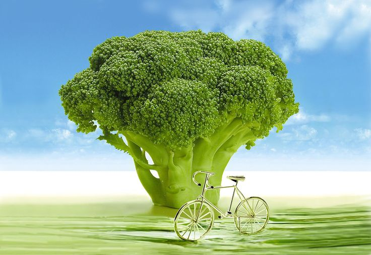 Nutrition and health benefits of broccoli, broccoli vitamins, how to cook broccoli from The Old Farmers Almanac