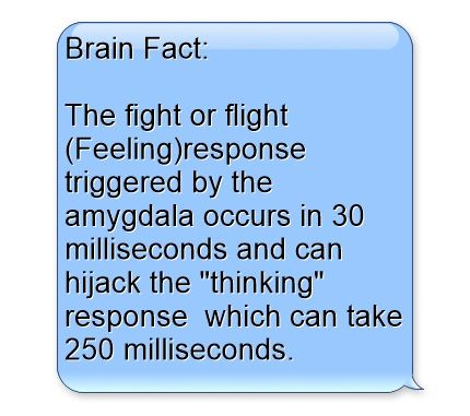 Brain Fact: The fight or flight (Feeling)response triggered by the amygdala occurs in 30 milliseconds and can hijack the thinking response which can take 250 milliseconds.