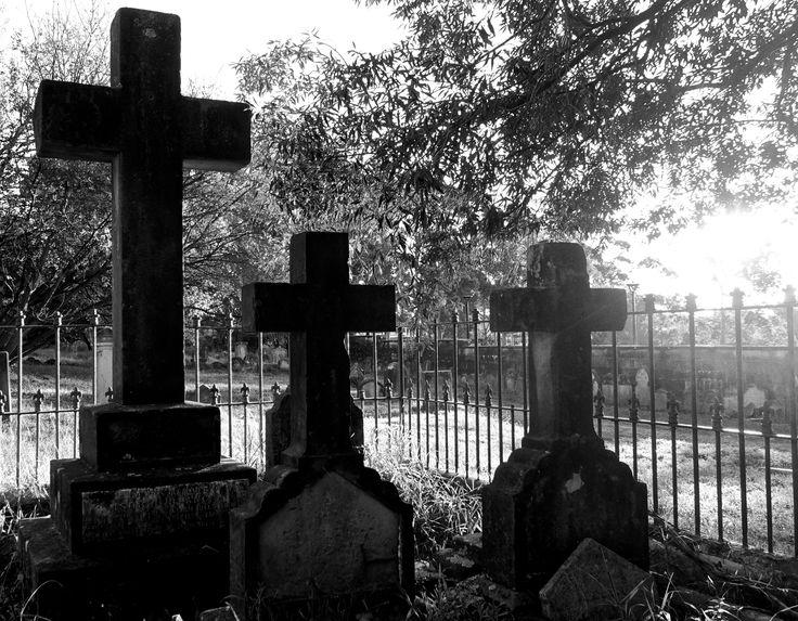 Newtown Cemetery, NSW.