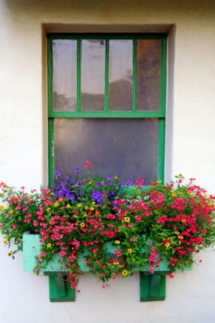 window box - colorful box and trim, via WeHeartIt