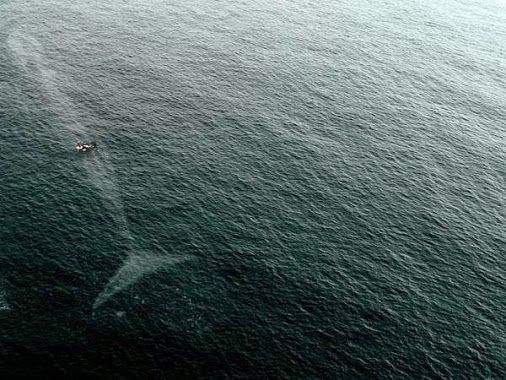 Why I'm scared of the #ocean