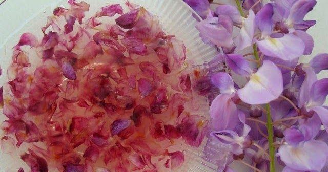 Mor salkım reçeli tarifi   Mor salkım çiçeği reçeli nasıl yapılır   Çiçek reçelleri tarifi        Çiçek reçellerini sevince; çardaklar, ...