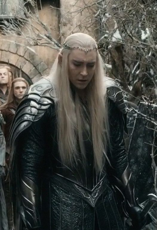 Thranduil Appearance In Lord Of The Rings