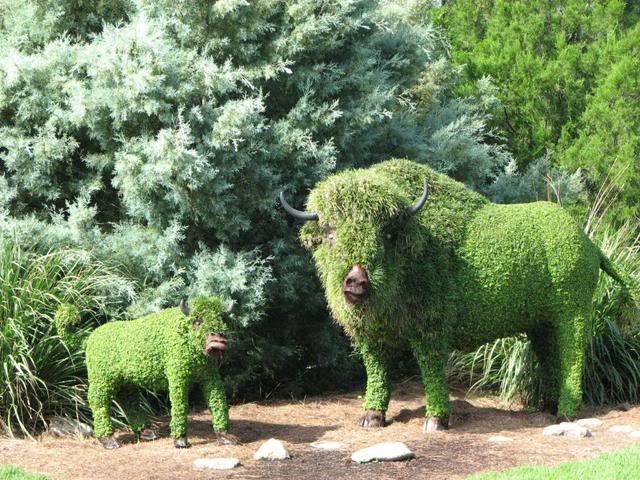 28 Best Images About Topiary On Pinterest Gardens Maze