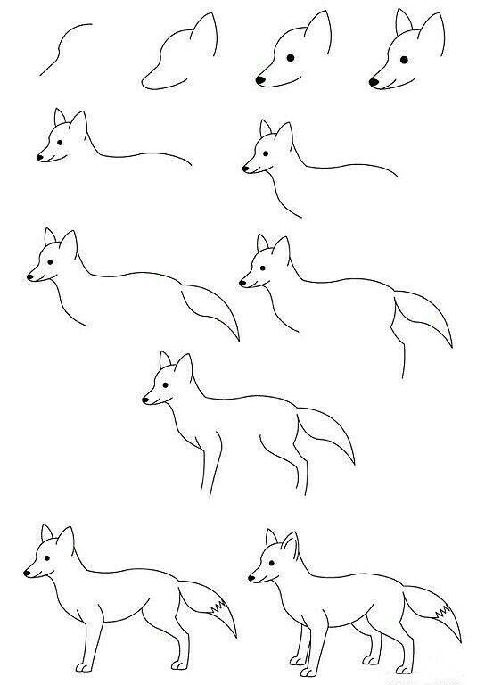 Aprende A Dibujar Un Zorro Fácil Y Sencillo Doodles
