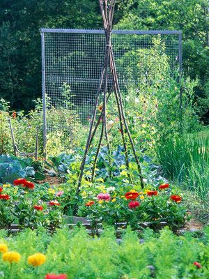 22 best A Square Foot Garden images on Pinterest | Outdoor gardens ...