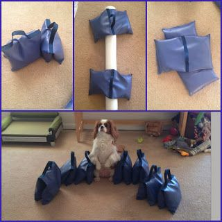Dog agility course make your own equipment