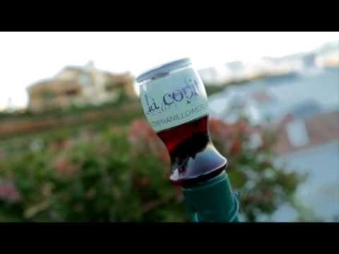 Shark Tank (TV Program), Quart Vin Glass